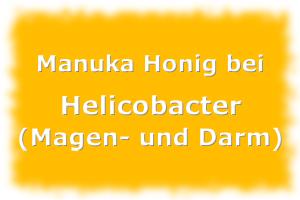 Manuka Honig gegen Helicobacter Pylori