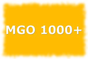 Manuka Honig 1000